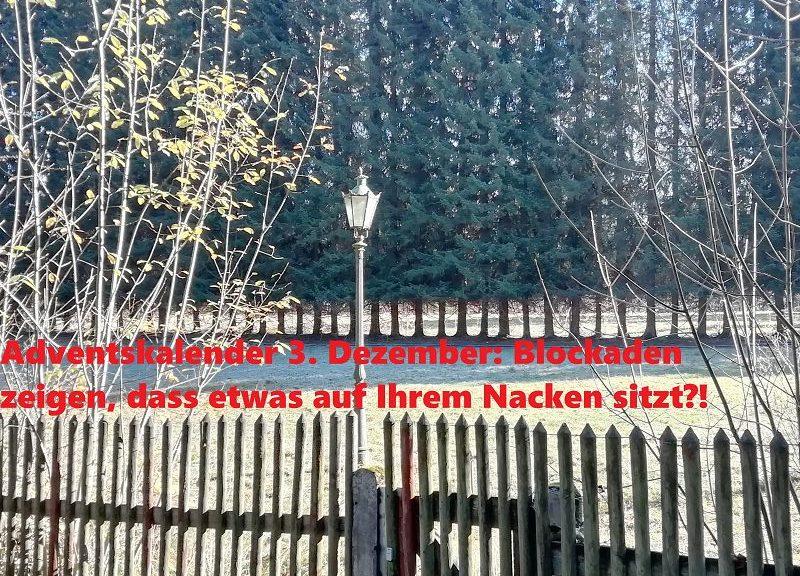 Adventskalender 3. Dezember: Blockaden zeigen, dass etwas auf Ihrem Nacken sitzt?!