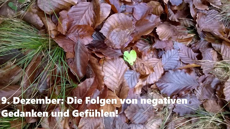 9. Dezember: Die Folgen von negativen Gedanken und Gefühlen!